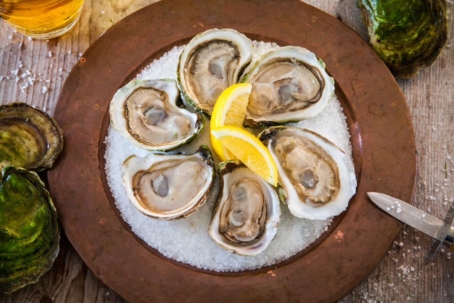 Oysters on the Half Shell - Best of Sea
